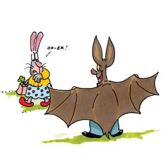 Cartoon of flashing bat - An illustration by Gray Jolliffe