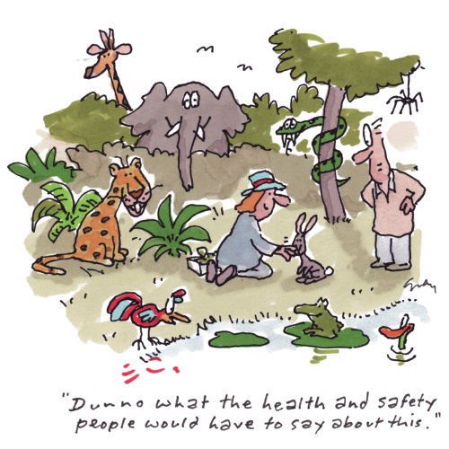 Nature illustration of animals health and safety
