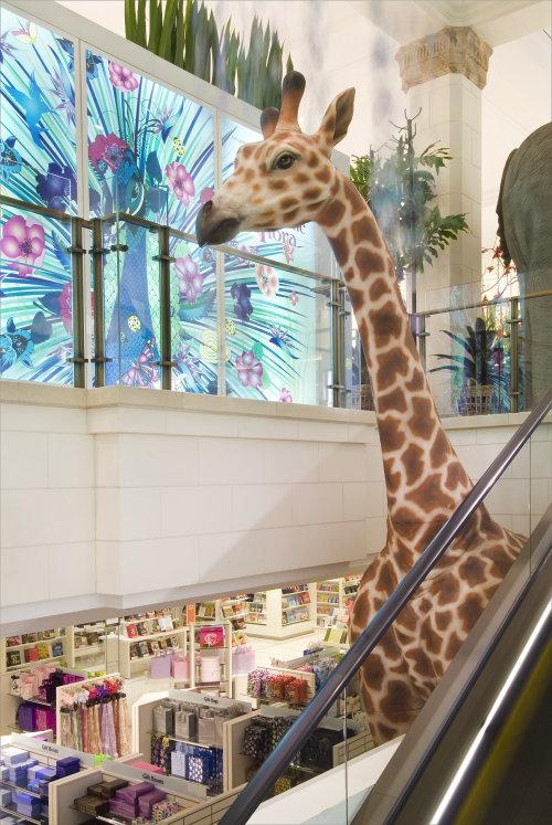 Animais girafas no prédio