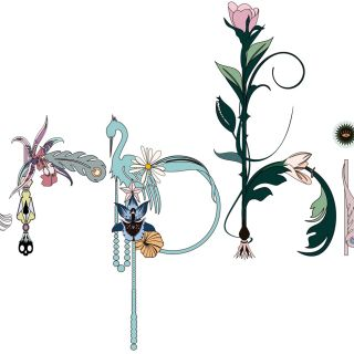 Nadia Flower 文字