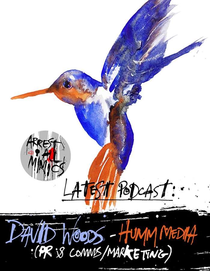 AAM:Humm Media的David Woods