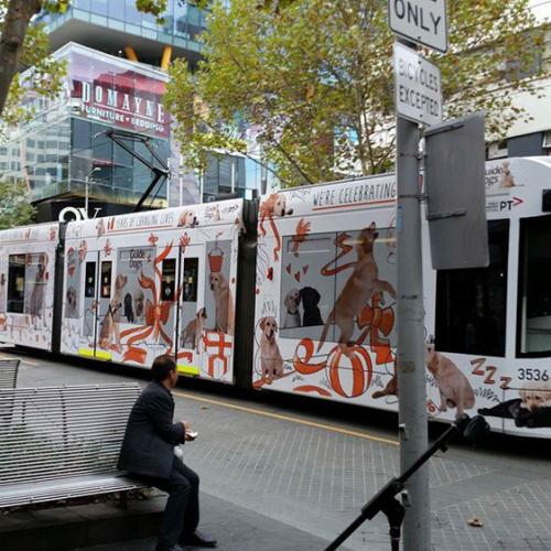 A Guide Dogs Tram