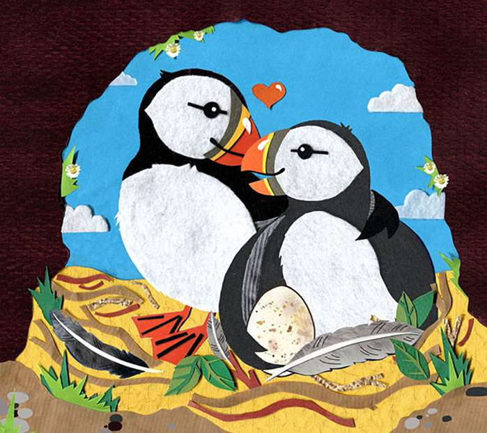 Puffins couple illustration
