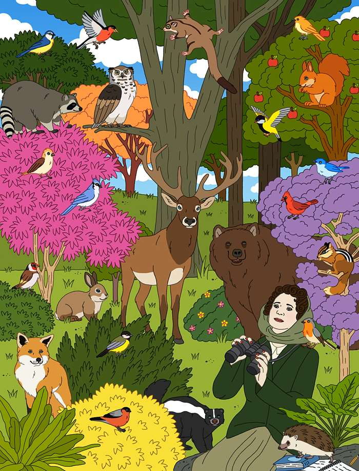 An illustration of Rachel Carson in The Forest