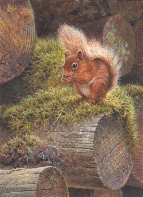Petite Painting of A Red Squirrel