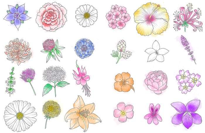Beautiful flowers pattern design