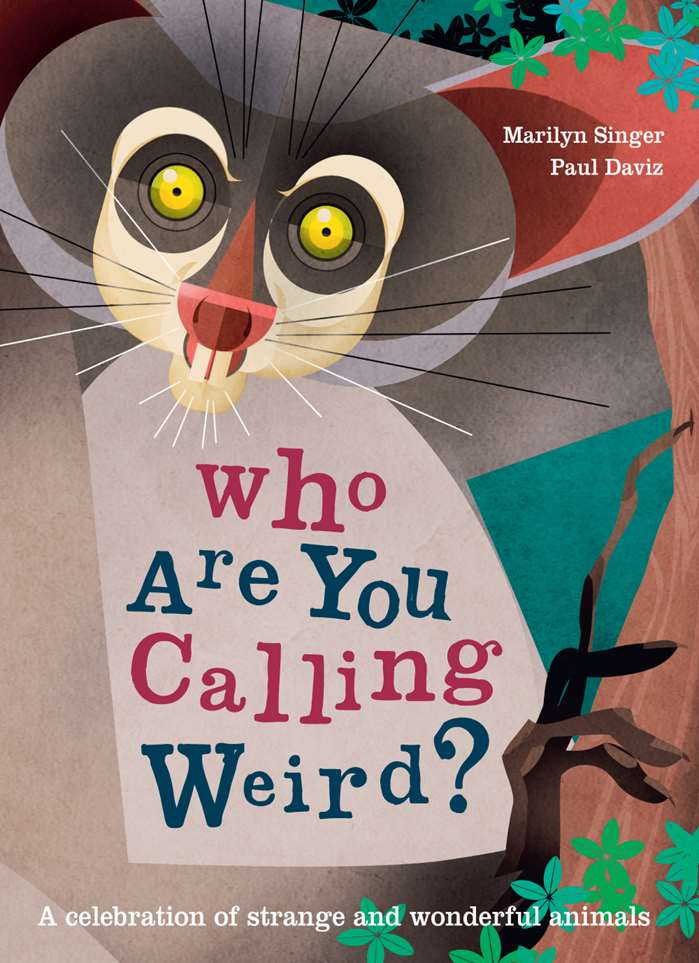 Picture book of Who are you calling weird?