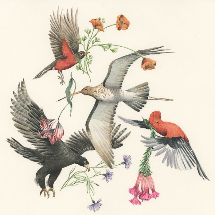 Pájaros simbólicos