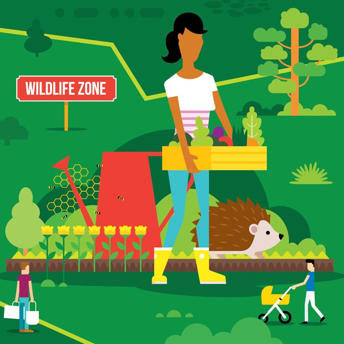 Graphic design of Wildlife zone