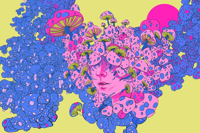 Open Your Mind to Psychedelics illustration for Rolling Stone Magazine.