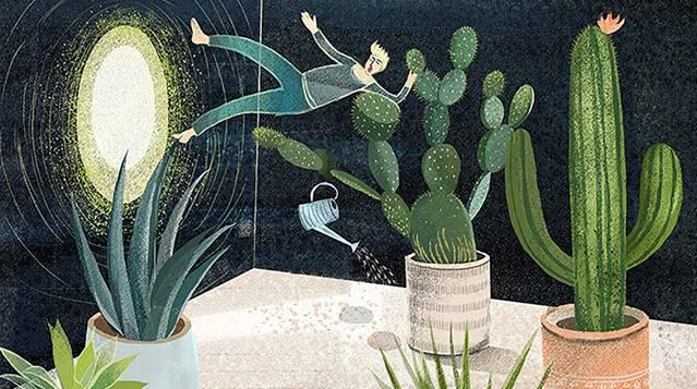 A boy fell into a magic cactus world when watering garden.